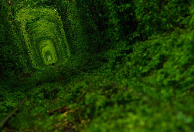 Tunnel-of-Love-09
