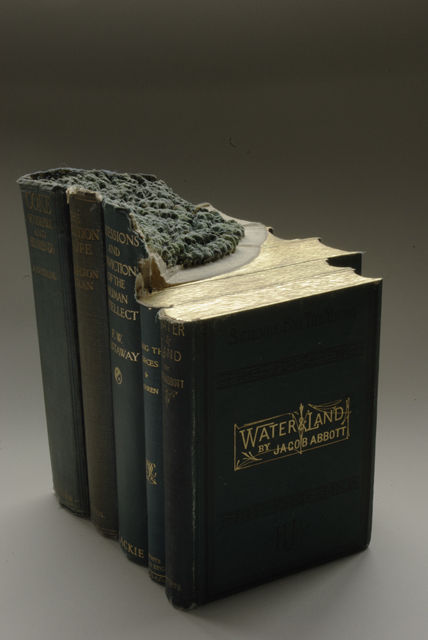 Book-Sculptures-by-Guy-Laramee-08