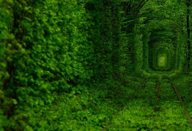 Tunnel-of-Love-02