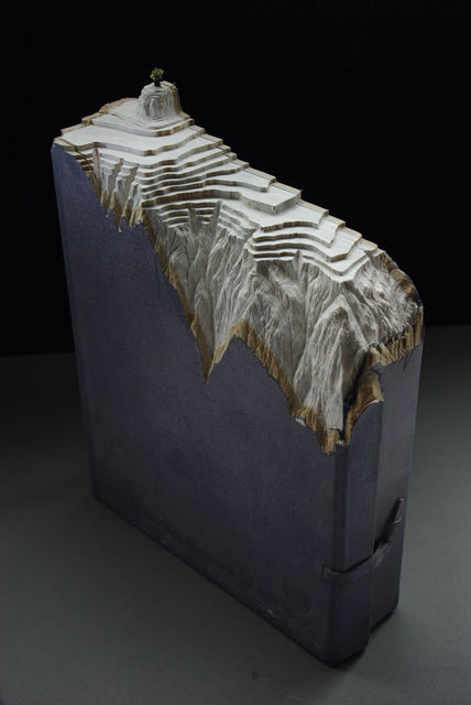 Book-Sculptures-by-Guy-Laramee-09