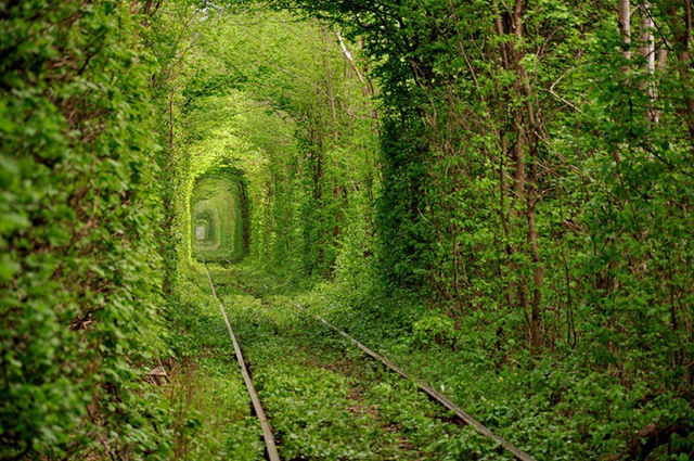 Tunnel-of-Love-00