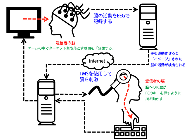 Brain-to-Brain-Communication-05.jpg
