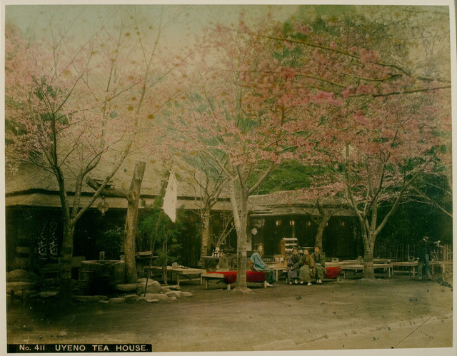 Japan-Meiji-Photos_19.jpg