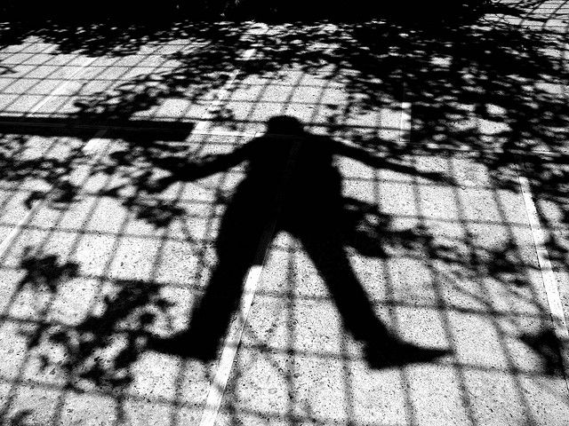 Shadow of the Grape Climber