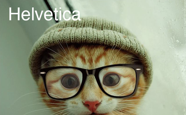 cats-as-fonts-00