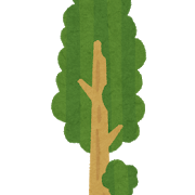 tree_sequoia.png